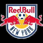 纽约红牛后备队