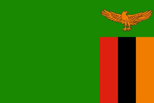 赞比亚女足