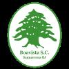 博维斯塔FC